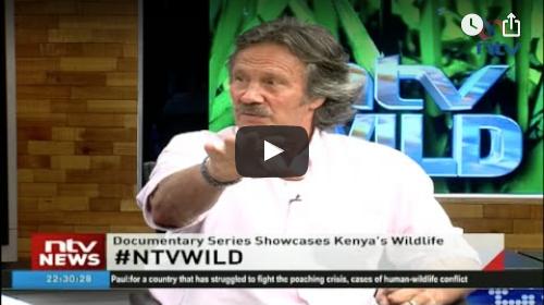 #NTVWild panel discussion: Understanding the wild in Kenya with Jonathan Scott
