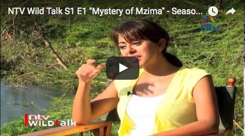 NTV Wild Talk: Highlights from Season 1 & 2