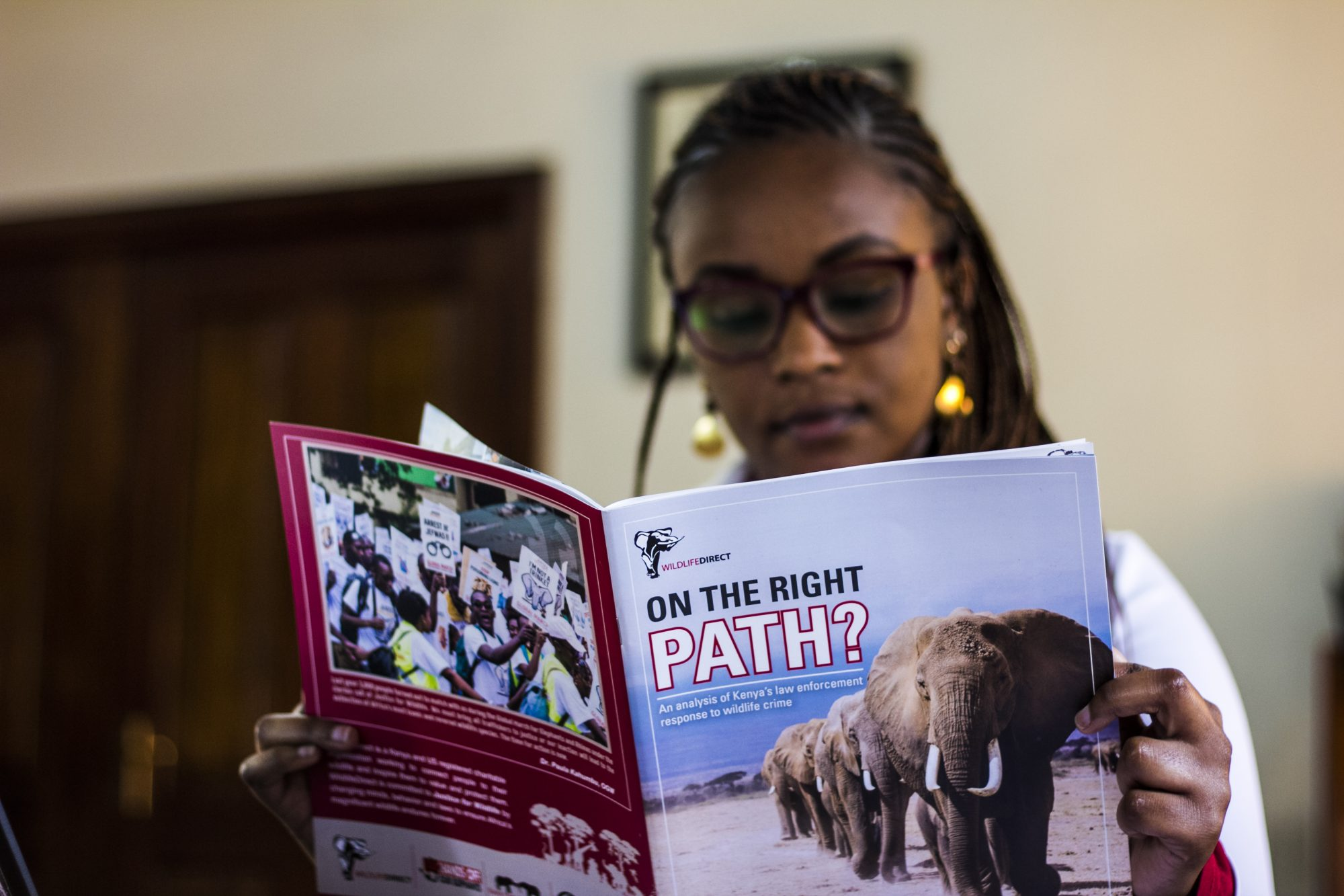 WildlifeDirect announces the release of a new report showcasing the state of wildlife crime cases in Kenya