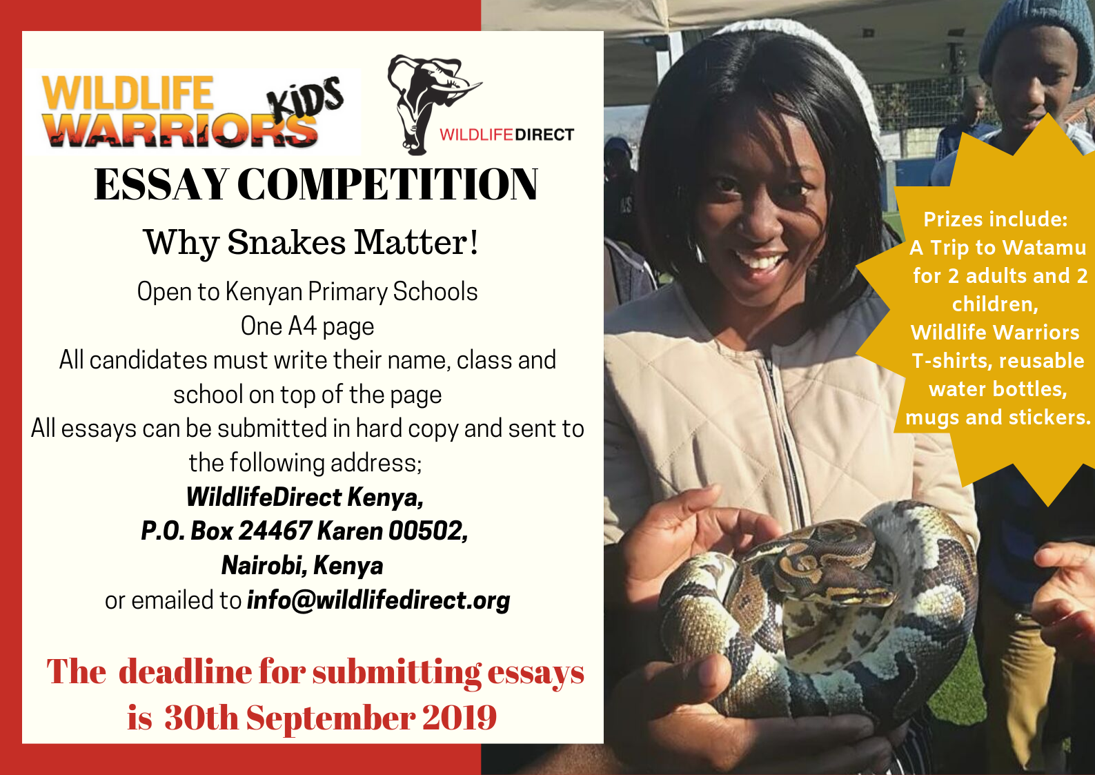 WildlifeDirect Launches Snakebite Awareness Essay Competition for Kenyan Primary Schools