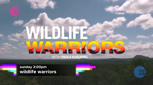 Wildlife Warriors On Switch TV