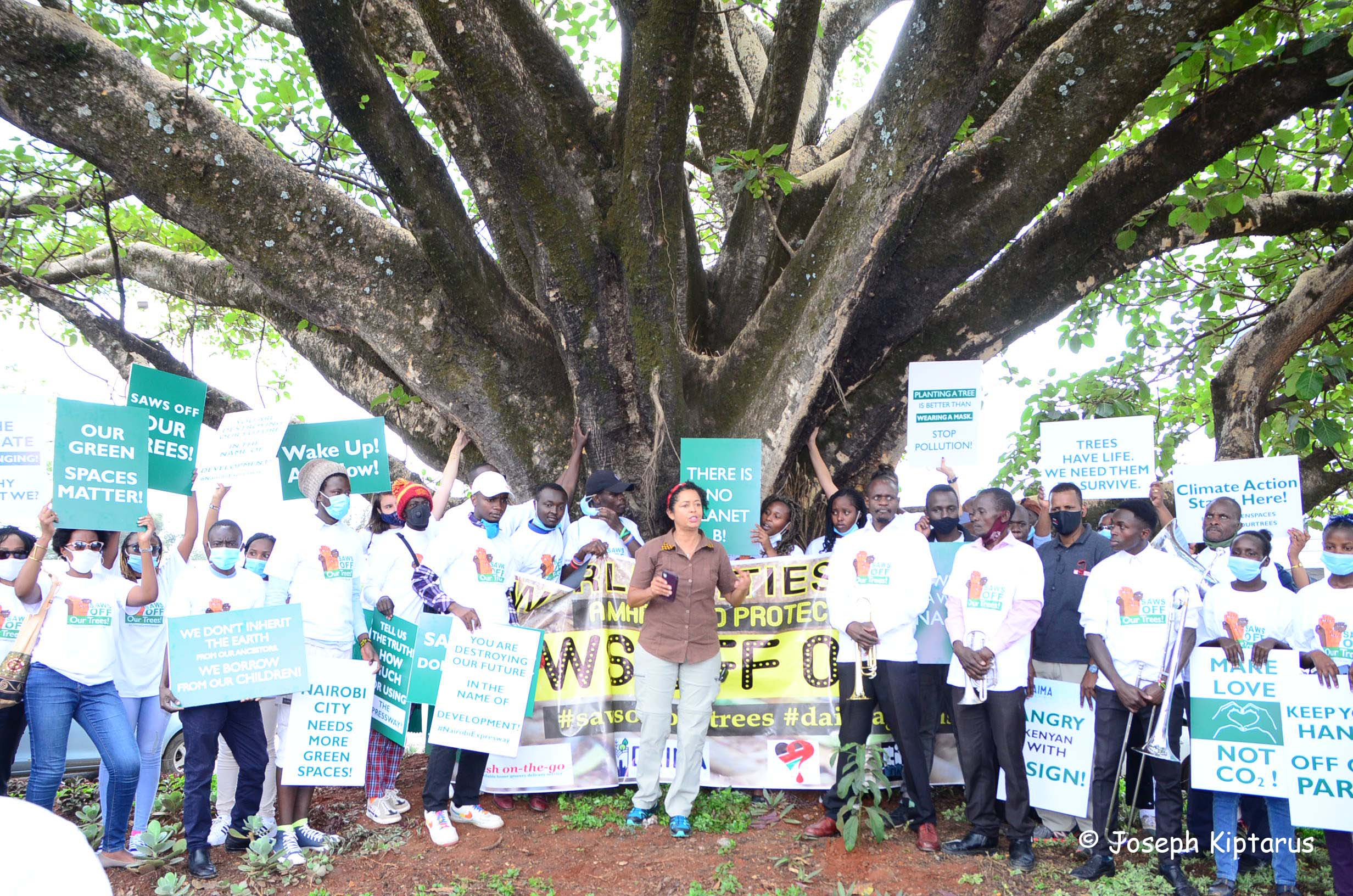A March To Protect Our Trees