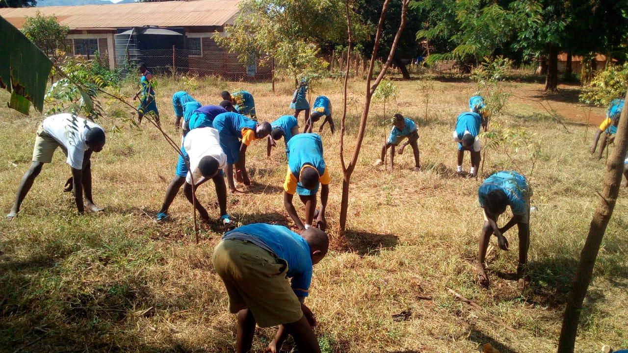 WildlifeDirect Launches Wildlife Warriors Kids Restoring Nature Challenge